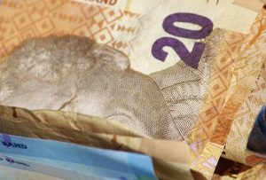 dollar-bill-596165_640